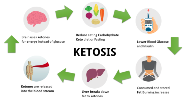 ketogenic diet work and process